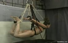 Gifts Of Pain 07 7392 with Nicole